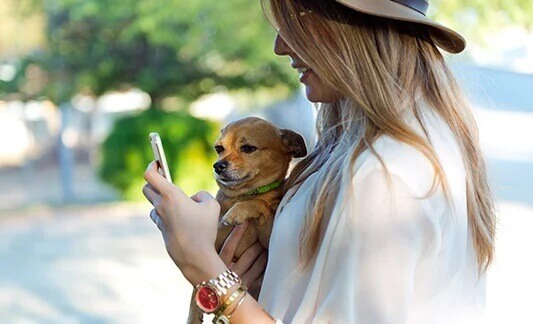 Highly Intuitive Consumer App for a Leading Pet Wellness and Healthcare Provider